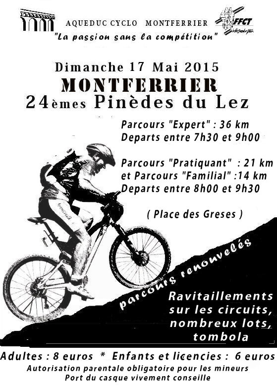 Flyer Pinedes 2015.jpg